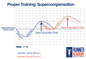 supercompensationcycle